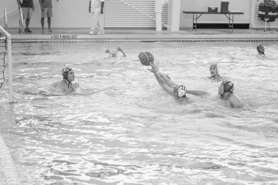 Water Polo paddles to the win