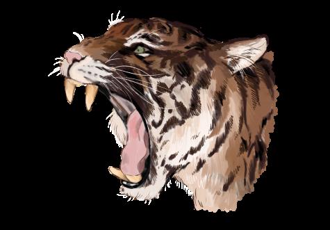 TV series to binge during quarantine: Tiger King